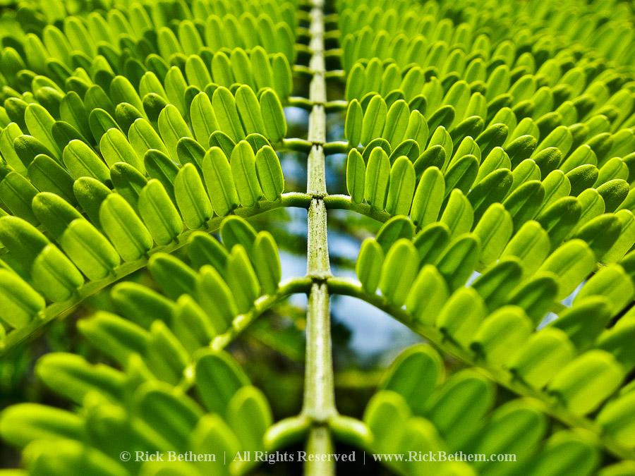 reflective moments photography ZmlghlC